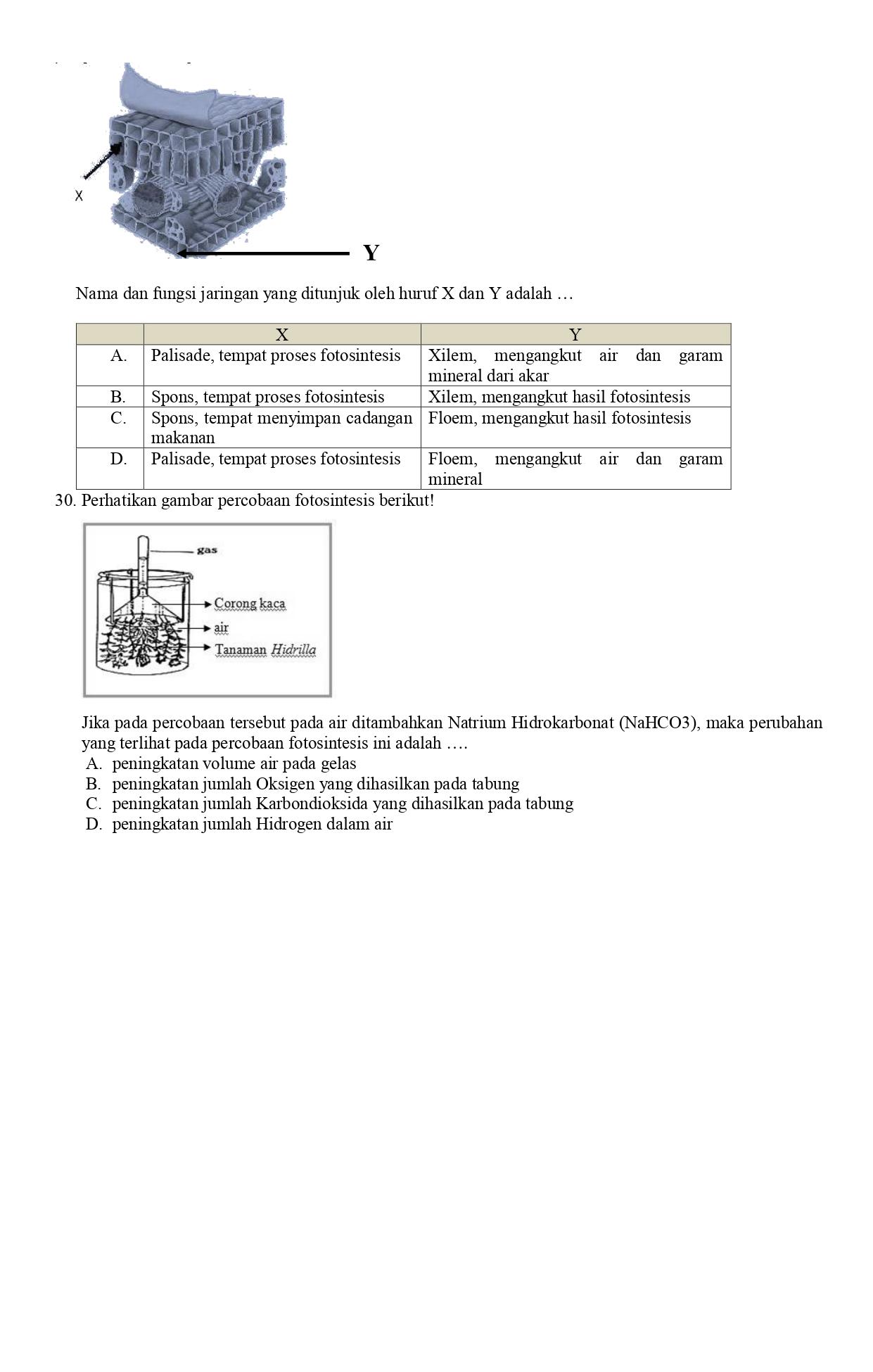 TUGAS IPA KELAS 9 I,J,K,L_page-0007